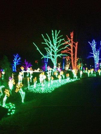 Meadowlark Botanical Garden : December Festival of lights