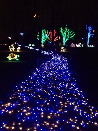 Meadowlark Botanical Garden : Festival of lightd