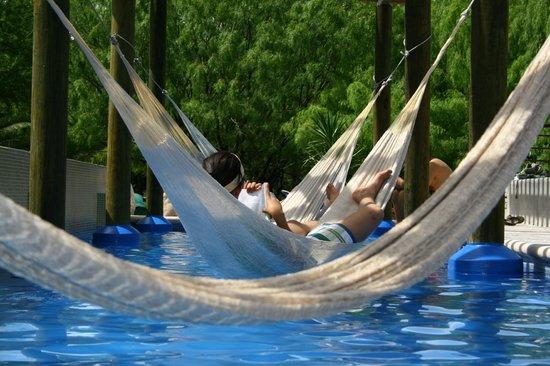Nuevo Leon, Mexico: Alberca con Hamacas
