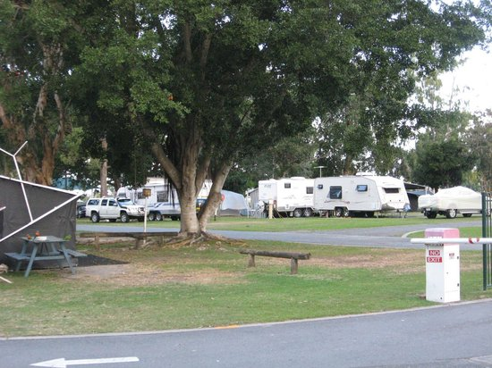 Jacobs Well Tourist Park: Main area of park