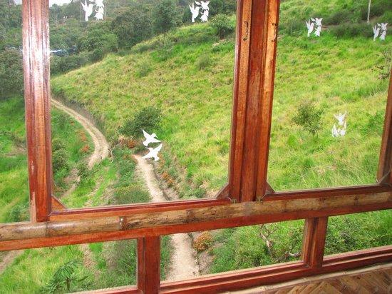 San Jorge de Tandayapa Hummingbird Sanctuary & Lodge: View from our room