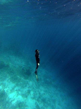 Only One Apnea Center: underwater silence