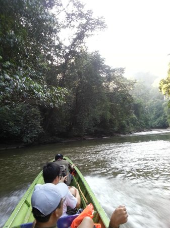 Sumbiling Eco Village: Trekking View