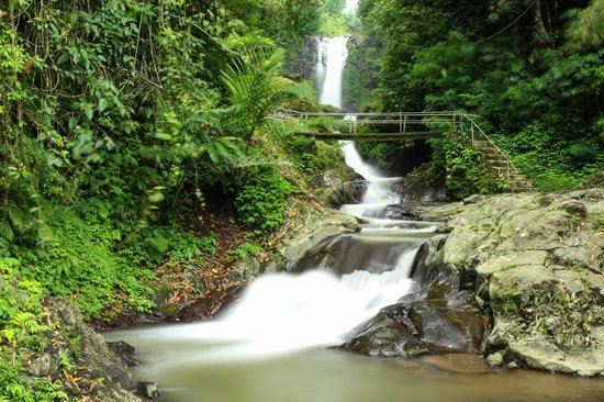 Gitgit Waterfall: The final spot where you see combination of 3 different waterfalls.