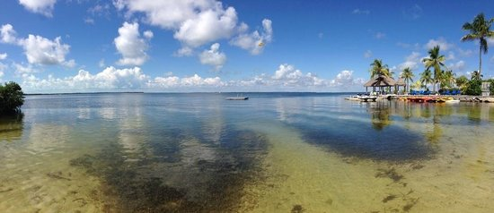Key Largo Bay Marriott Beach Resort: Crystal Clear Water