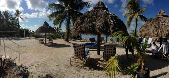 Key Largo Bay Marriott Beach Resort: Beautiful grounds