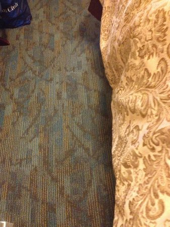 Inn at the Opera: Old, dirty carpet in room