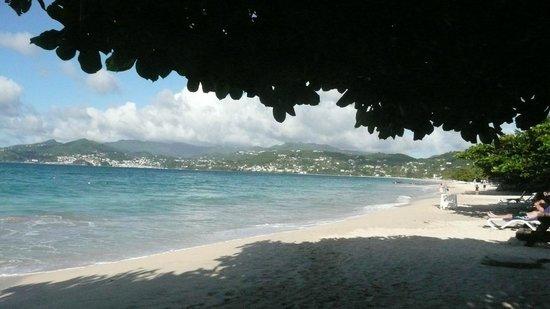 The Flamboyant Hotel & Villas: View from the beach bar