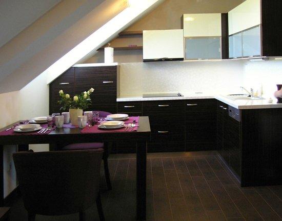 Penzion Zlobice: kitchen in the apartment 4*