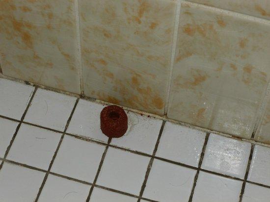 Hotel Aigle d'Or : sol salle de bain