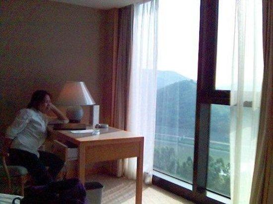 Best Western Shenzhen Felicity Hotel : we loved the view