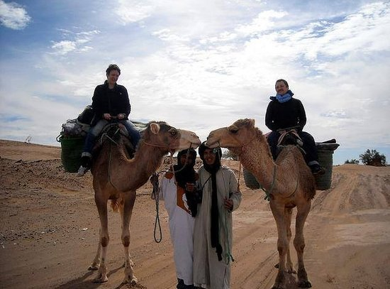 Easy Take Transport: camels ride  in sahara