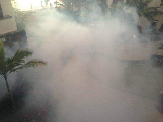 Angsana Balaclava Mauritius: pesticide spraying