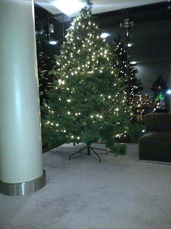The River Lee: Hotel Xmas tree