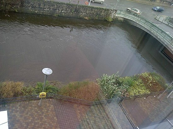 The River Lee