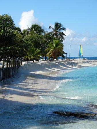 Palm Island Resort & Spa : View