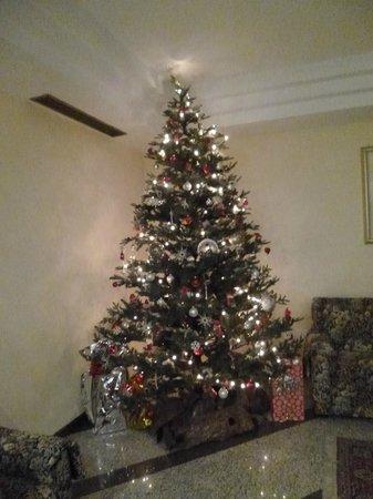 Hotel Daniela: Albero di Natale all'ingresso