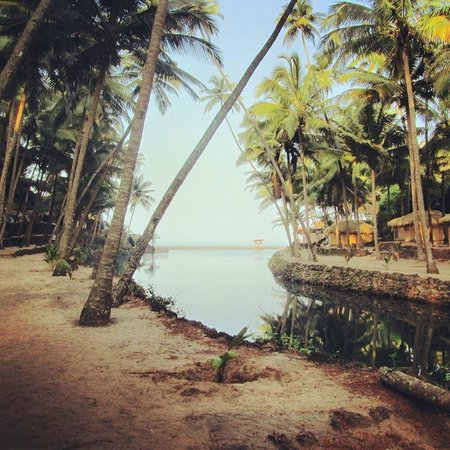 Dwarka Eco Beach Resort : View from the front of out hut