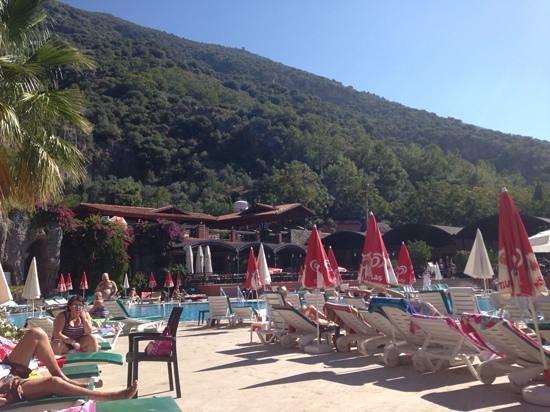 Suncity Hotel & Beach Club: by the pool
