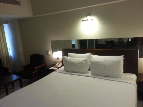 Surya Palace Hotel: Room view