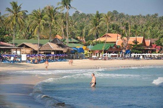 Samui Honey Cottages Beach Resort: Beach