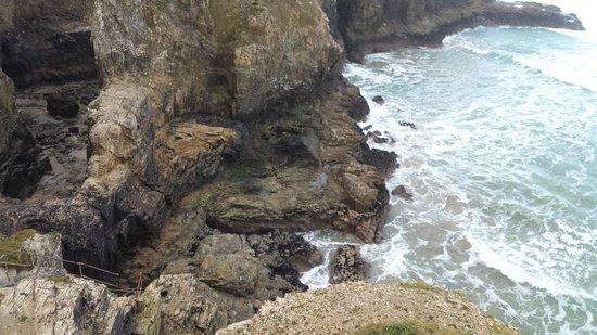 Seascape B&B : Local Sea veiw