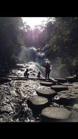 Vietnam Dalat Easyrider - Private Day Tours: Just beautiful