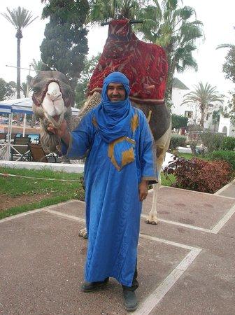 Caribbean Village Agador: chocola ist das liebste Kamel was ich kenne