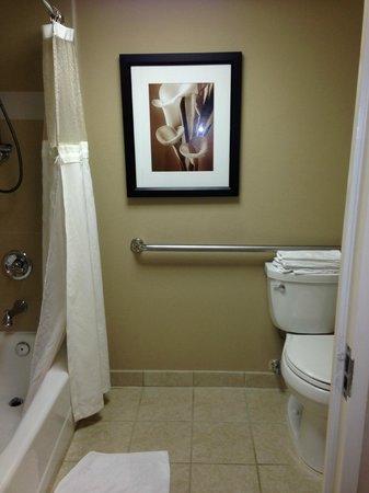 Hilton Orlando Lake Buena Vista - Disney Springs™ Area: Banheiro