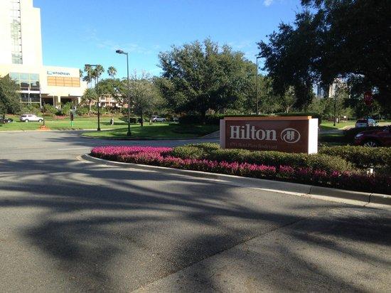 Hilton Orlando Lake Buena Vista: Entrada