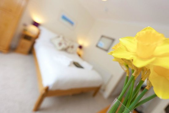 Little Leaf Guest House : Garden Room - with access to private sun terrace/garden