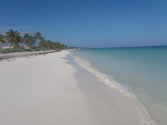 Melia Cayo Coco: beautiful beach