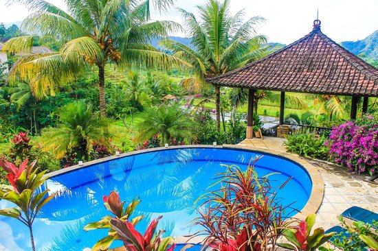 Cepik Villa: Swimming pool overlooking to rice terraces and mountains
