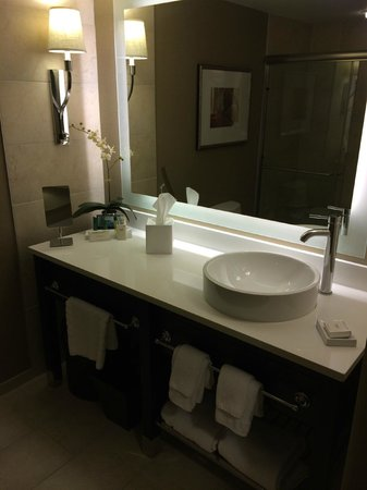 Hilton Inn at Penn: Bathroom