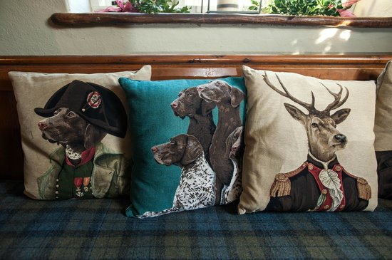 The White Hart: Comfy cushions