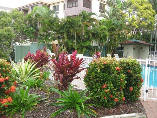 Bayview Waters Waterfront Apartments: Территория у отеля
