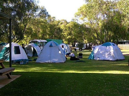 RAC Busselton Holiday Park: Camp Sites