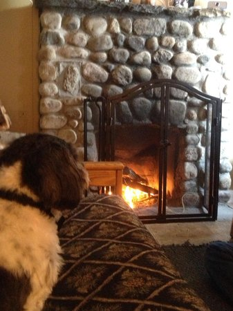 Pemi Cabins : He loved the warmth of the fireplace!