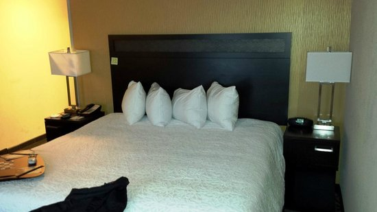Hampton Inn & Suites Columbia / South: KING SIZE BED