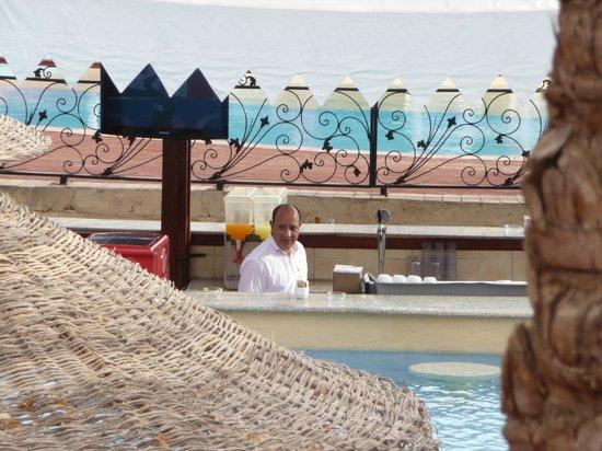 Nubian Island Hotel: swim up bar