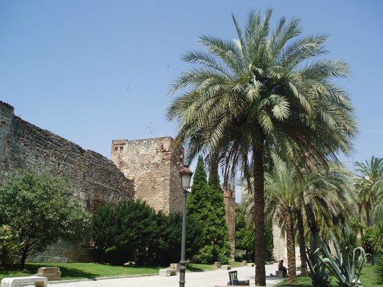 Muralla y Torres Albarranas