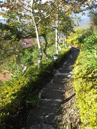 Ming Ging Farm: Pathway leading from Block A to Block C