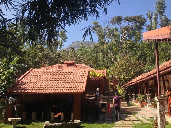 Thotadhahalli Home Stay : View of Mulayangiri (tallest peak in Karnataka) from the home stay
