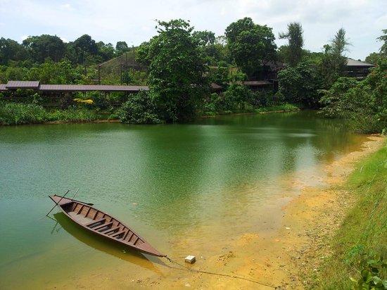 River Safari: The river is calling