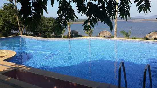 Pool Picture Of Coorg Jungle Camp Backwater Resort Kushalnagar Tripadvisor