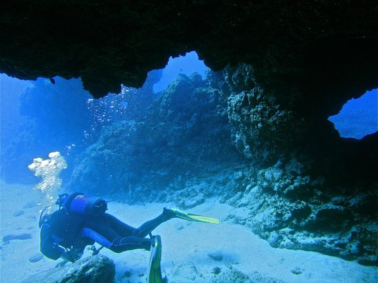 Dive Club Tenerife