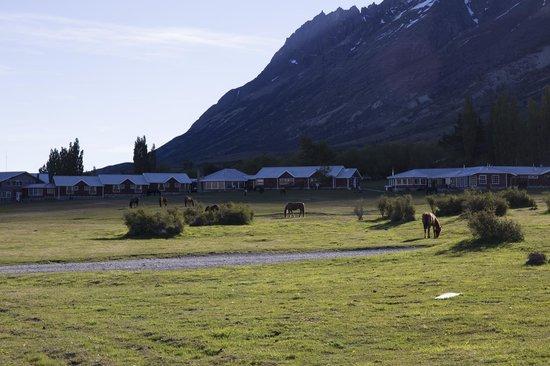 Las Torres Patagonia: Cavalli davanti all'hotel
