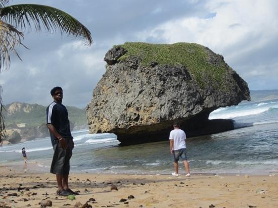 Bathsheba Beach: great visit