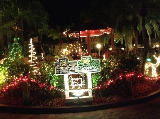 Tropical Beach Resorts: Merry Christmas!