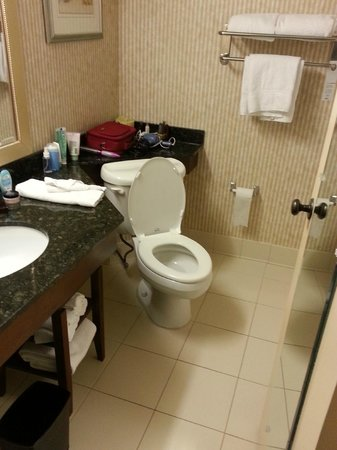 Marriott Knoxville: Odd toilet placement